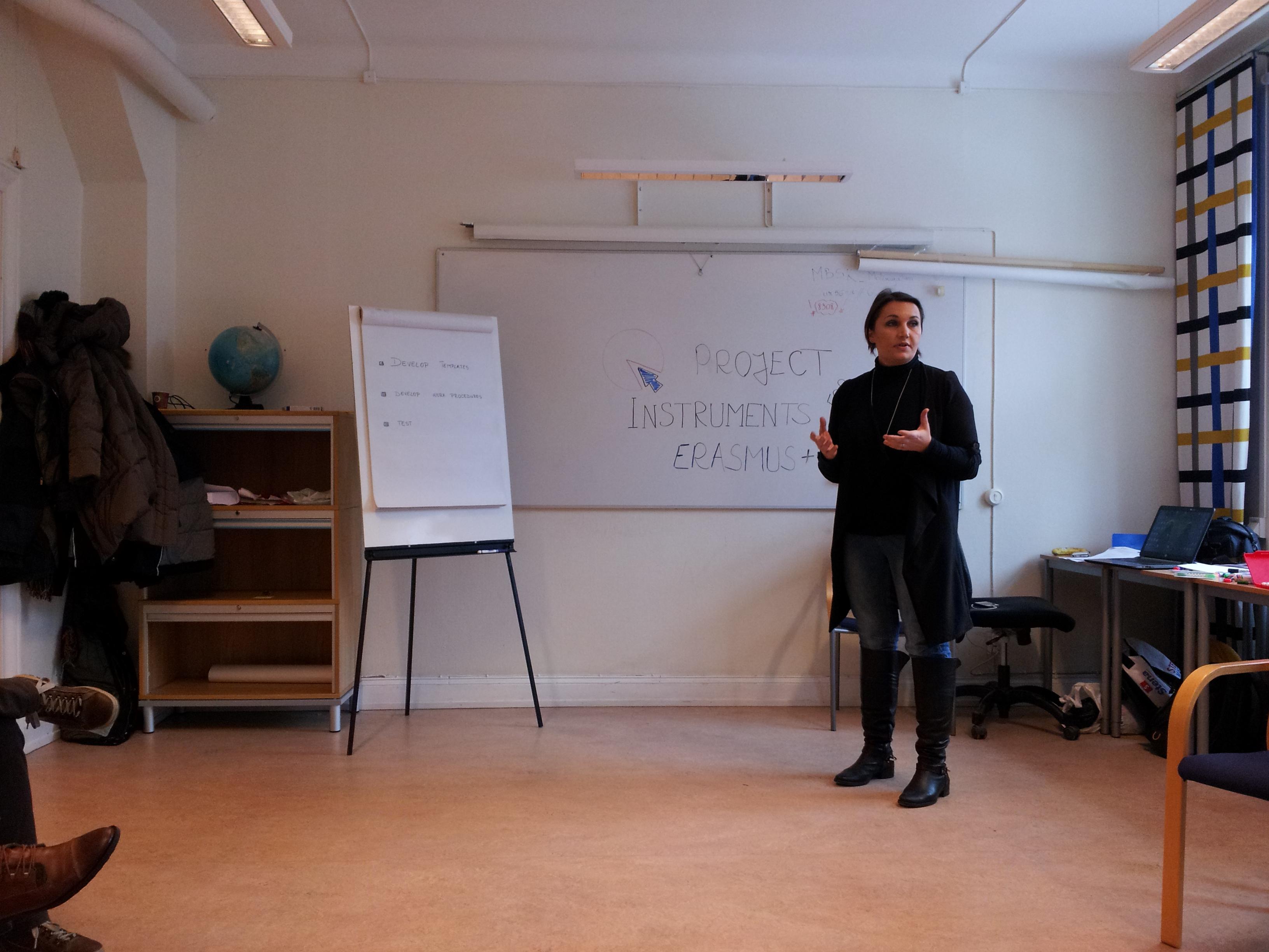 PIE+ Kick-off meeting in Sweden 3